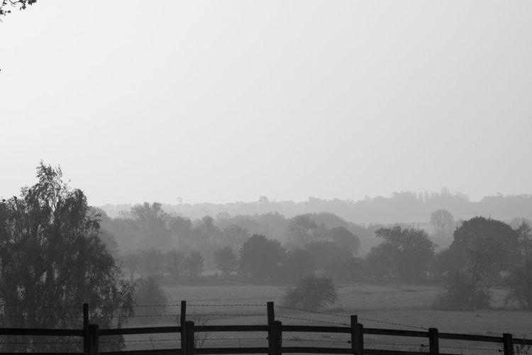 Foggy Morning Monocrome Blackandwhite EyeEm Best Shots