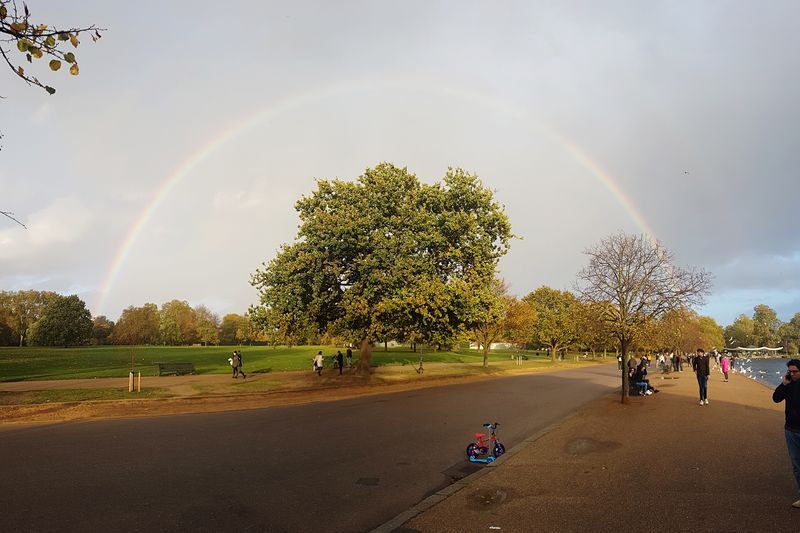 Rainbow over Hyde Park Vegetation Clouds And Sky Tree Park Rainbow Hyde Park, London London Tree Plant Rainbow Sky Nature Real People Group Of People Cloud - Sky Day Men Beauty In Nature People Outdoors Leisure Activity Lifestyles City Growth Tree Plant Nature Beauty In Nature Large Group Of People Scenics - Nature