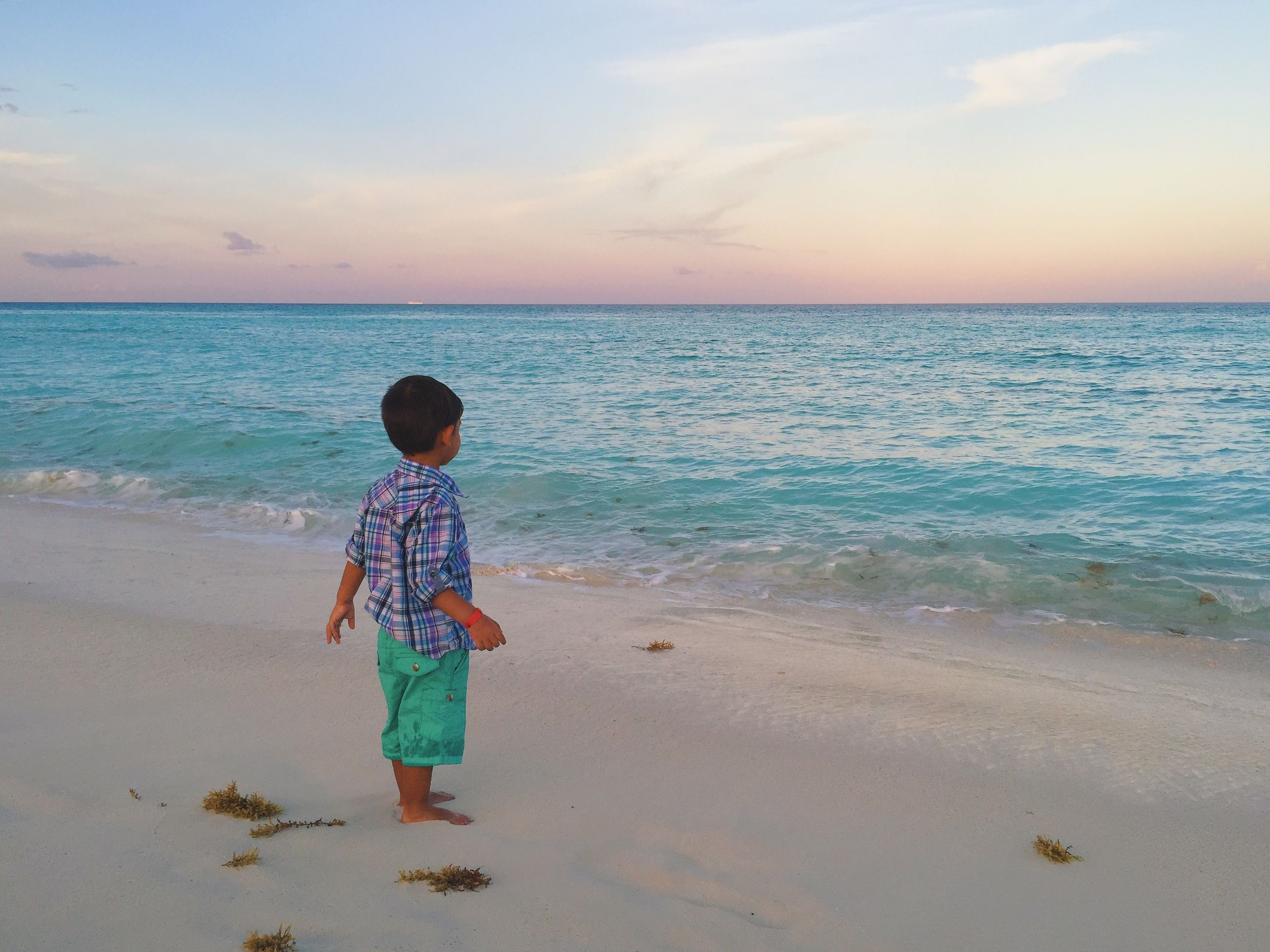 beach, sea, water, horizon over water, full length, shore, childhood, lifestyles, leisure activity, sand, sky, boys, casual clothing, elementary age, girls, rear view, vacations, beauty in nature