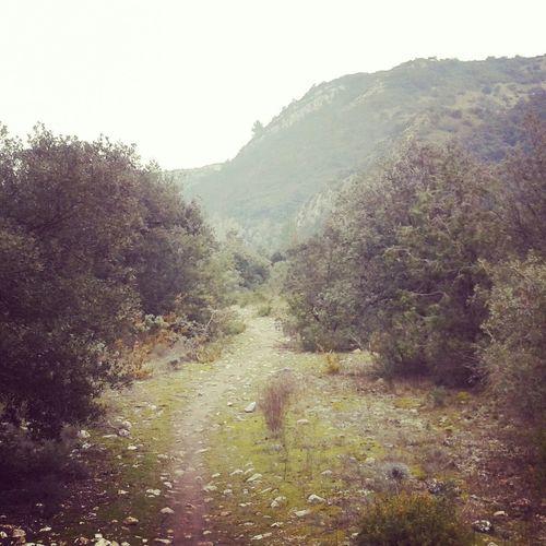 Trailrunning Trail Running Trail Running Running Time Runner Run Course à Pied Courir Gard