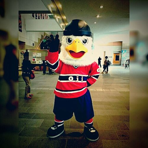 20150830 → Ojieagles のマスコットキャラ「しゅうとくん」 どうやらフルモデルチェンジしたようだ(・ω・)。 Alih Icehockey Mascot Characters Of Sports Teams Hokkaido,Japan