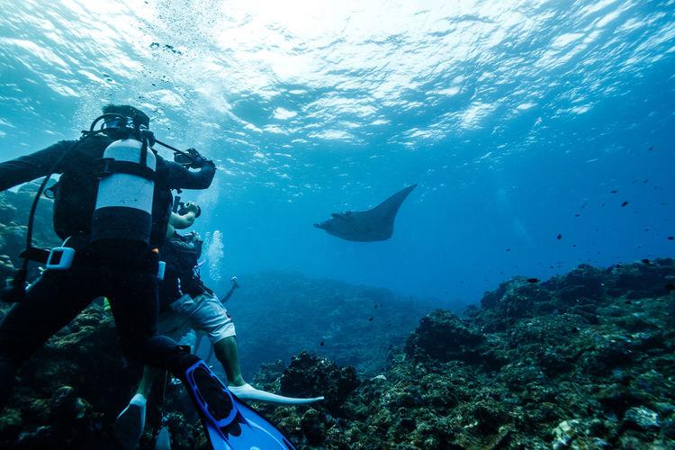 Scuba diver in sea
