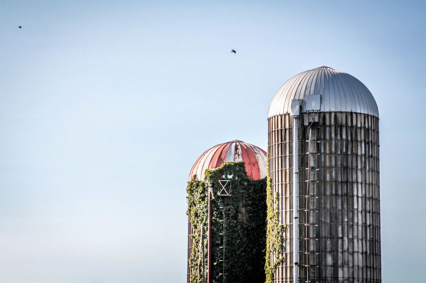 Country Skies Farm Rural Rural America Rustic The Week Of Eyeem The Week On EyeEm Vines Architecture Building Exterior Built Structure City Clear Sky Day Dome In Flight No People Outdoors Rural Scene Sky
