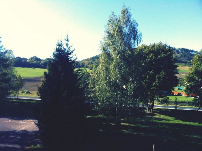 view from my apartment , beutiful autumn just started :p