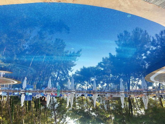 Reflection , Pool , Blue
