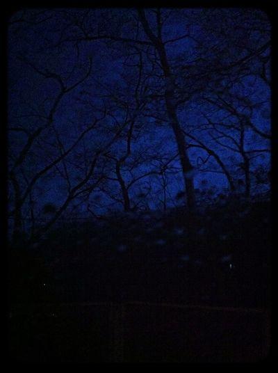 Scary Dark Morning