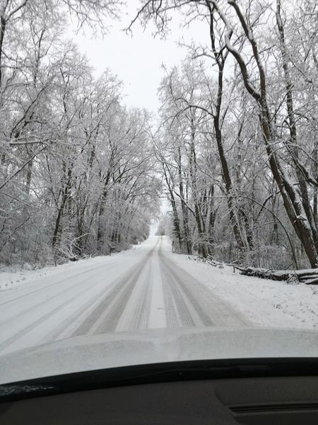 Snow Tree Winter Transportation Cold Temperature The Way Forward Windshield Nature Road Bare Tree Vehicle Interior Snowing Day Tire Track Beauty In Nature Outdoors Oneplus 3 OnePlusCamera Oneplusphotography Miles Away