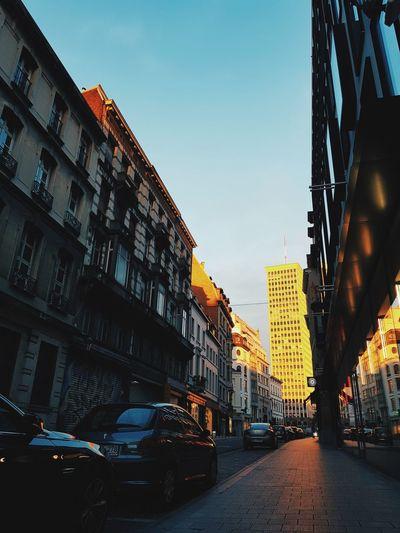 Sun Kissed City