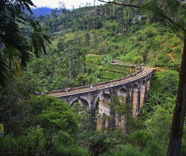 View of bridge over railroad track