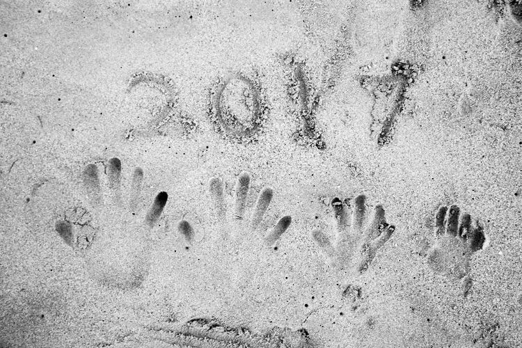 2017 Beach Close-up Day Handprint Handprints High Angle View Nature No People Outdoors Paw Print Sand