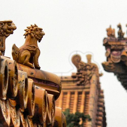 Observando desde las alturas China Beijin Pekin Forbiddencity monumento Viaje turismo trip ncamphoto igdaily webstagram statigram instatalent instagramers picofthedayprimeshots photooftheday tagsta instagood bestpicturetagsforlikes likesmagazines salimoshoy