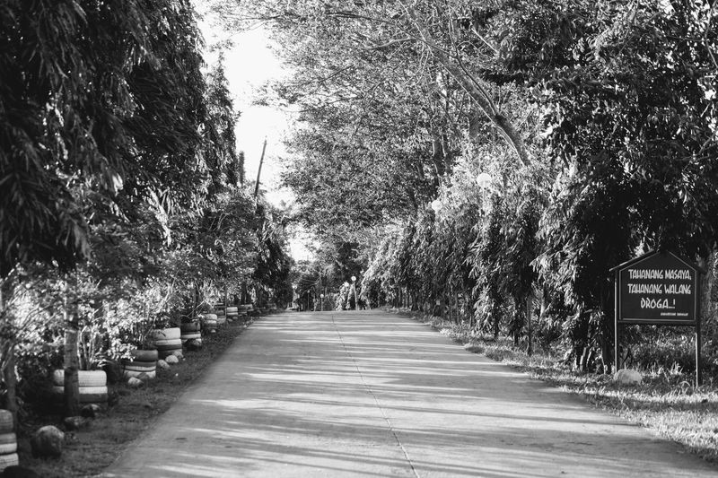 The Way Forward Tree Road Outdoors Day Nature No People Black And White Photography Philippines 2017 Beauty In Nature Road To Nowhere Black And White Collection  Trees And Nature Treescollection Street Photography Philippinesphotography Outdoor Photography Provincial EyeEmNewHere The Great Outdoors - 2017 EyeEm Awards