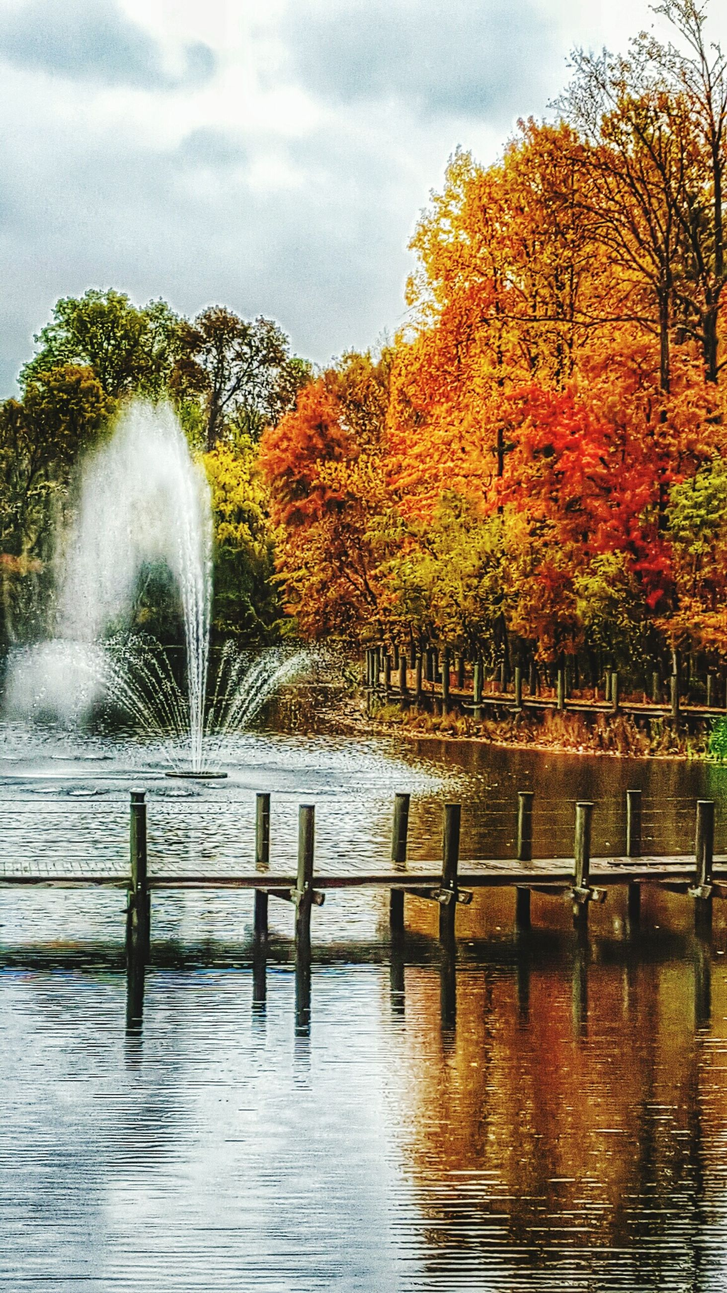tree, water, tranquility, tranquil scene, beauty in nature, nature, scenics, lake, waterfront, reflection, autumn, change, season, sky, park - man made space, growth, idyllic, gazebo, outdoors, day