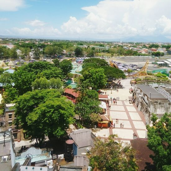 View from the Ferris Wheel Tree Outdoors Onlyinlaguna Tandc28