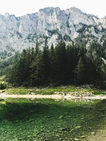 Grüner See , Austria Styria Grüner See Austria Wood Lake Tree Mountain Nature Tranquility Scenics Tranquil Scene No People An Eye For Travel EyeEmNewHere