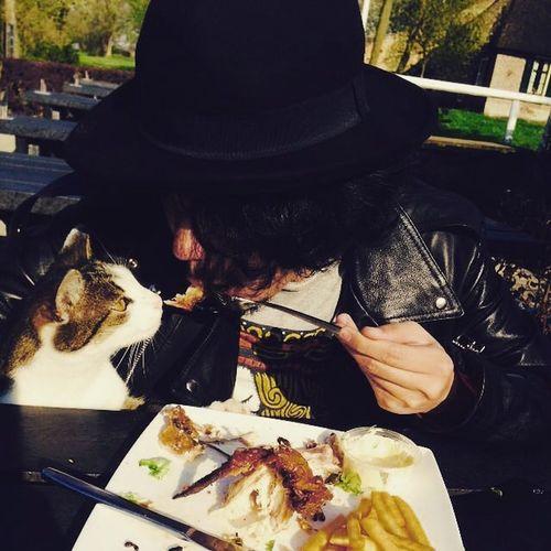 Eat &cat