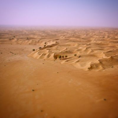 Maleiha desert sharjah Sand Sand Dune Desert Arid Climate Nature Tranquil Scene Tranquility Beauty In Nature Extreme Terrain Environment Outdoors No People Landscape Sky Day Lost In The Landscape Lost In The Landscape