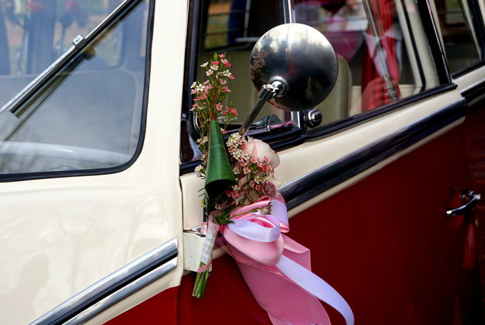 Ribbon VW VW Bus Wedding Animal Themes Animals In The Wild Car Close-up Day Flowers Land Vehicle Mode Of Transport Nature No People Ornaments Outdoors Side-view Mirror Stationary Transportation Volkswagen Volkswagenbus Wedding Ceremony Wedding Decoration Window