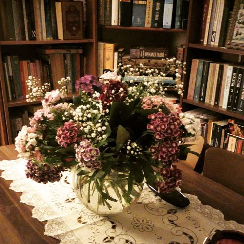 Books My House Flower Close-up Architecture Bouquet