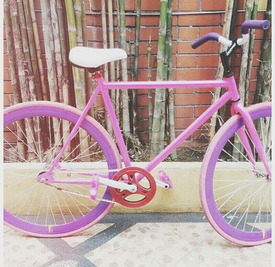 #united #love #pink