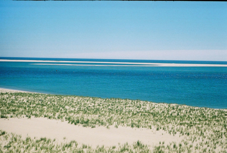 Looking out over the dunes to the ocean on Cape Cod, Massachusetts. Captured with a Leica ii on 35mm Fujifilm. Beauty In Nature Blue Cape Cod Clear Sky Coastline Day Horizon Over Water Idyllic Landscape Massachusetts Nature New England  No People Non-urban Scene Outdoors Plant Remote Scenics Sea Shore Sky Summer Tranquil Scene Tranquility Water