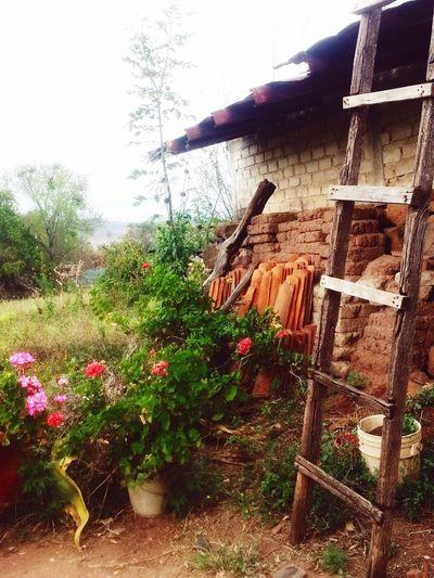 La joya chica Altos De Jalisco Guadalajara Jalisco un pueblo lleno de historia, casa de adobe con mas de 100 años, historia como la revolución...