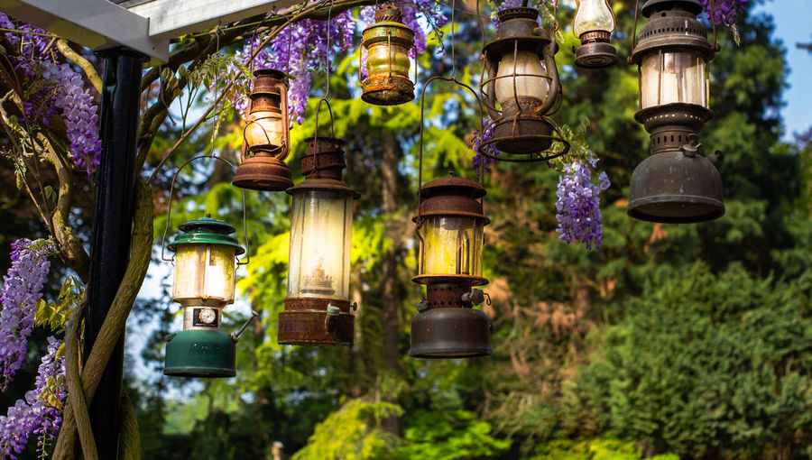 Low angle view of illuminated lanterns hanging on street light