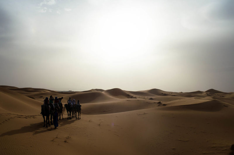 Tourists at desert