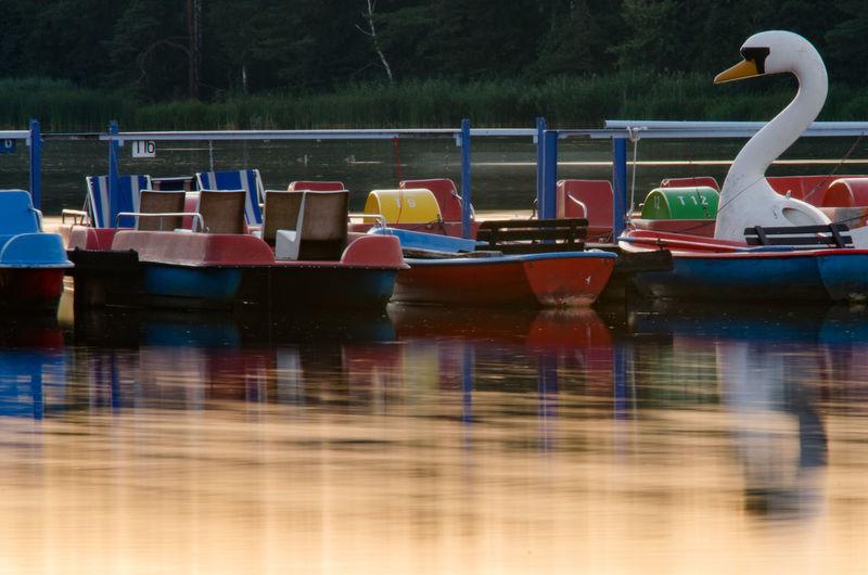Water Nautical Vessel Lake Reflection Tree Landscape Pedal Boat Swan Recreational Boat Pier