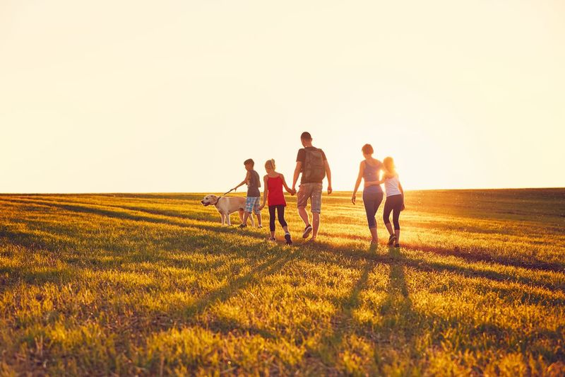 Summertime in the countryside. Silhouettes of the family with dog on the trip at the sunset. Children Family Man Nature Tourist Travel Trip Vacations Wanderlust Woman Activity Child Childhood Dog Hikking Landscape Meadow Parents Pets Rural Scene Summer Sunset Together Togetherness Tourism