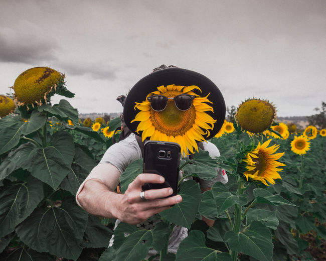 Saw this cool sunflower taking a selfie in the field. :p Creative Photography Creativity EyeEmNewHere Flower Flower Head Flowering Plant Freshness Hand Holding Nature One Person Outdoors Photographing Photography Themes Plant Portrait Portrait Photography Real People Self Portrait Selfie Sunflower Yellow The Portraitist - 2018 EyeEm Awards The Creative - 2018 EyeEm Awards 50 Ways Of Seeing: Gratitude