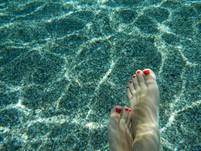 Low section of woman legs in sea