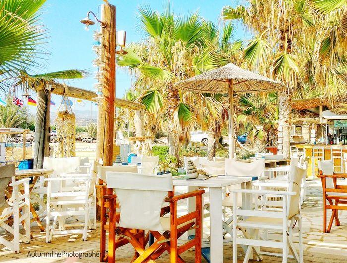 No People Day Outdoors Tree Close-up Beachbar Cyprus Sea You Love Holiday