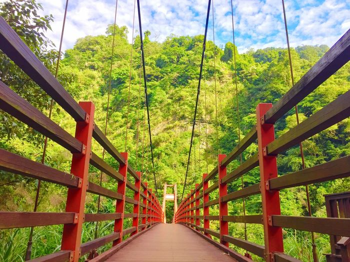 On The Road Bridge - Man Made Structure Outdoors Nature Elevated Walkway No People