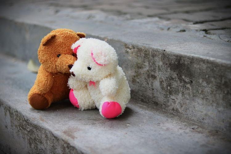 Teddy bears on steps
