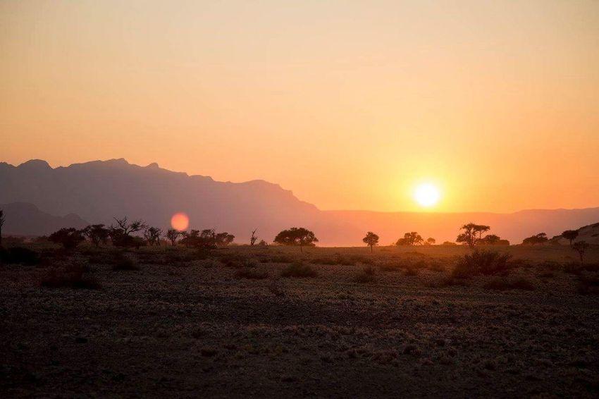 Namibia Sunrise Landscape Dawn Travel Canon Travel Photography Wanderlust Silence Viaggiare Wonderful Lonelyplanet Eyemphotography Globetrotter Travel Destinations Nationalgeographic EyeEmNewHere Phototraveller Waphaphotographer Liveforadventure Happiness Namibia Africa Sunrise Wildlife