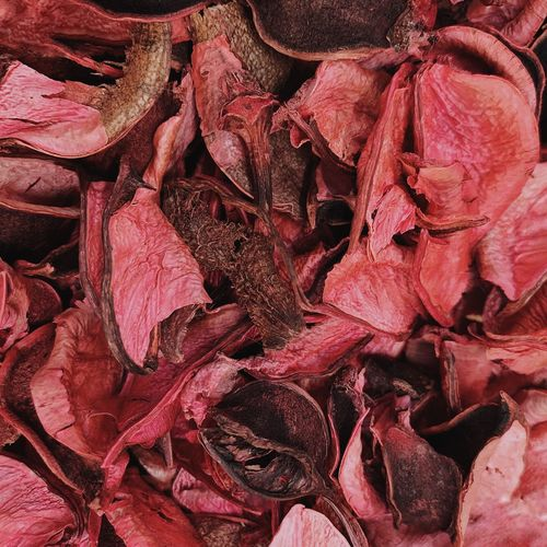 Full Frame Shot Of Dried Petals