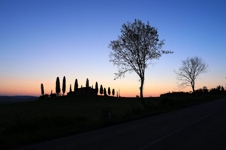 Toscana Pienza (toscana) EyeEm Best Shots Eye4photography  EyeEm Selects Italy Ancient Civilization Tree City Sunset Silhouette History Business Finance And Industry Architecture Sky Building Exterior