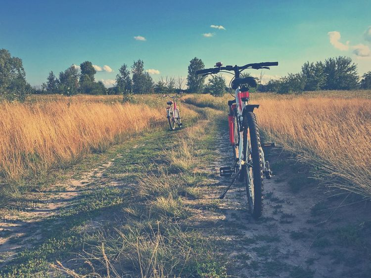 Bicycles Dirt Road Nature Field Land Day Landscape Land Vehicle Bicycle Summer Road Tripping