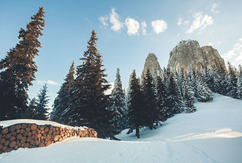 EyeEm Best Shots Landscape_Collection Tranquility Trees Wood Wood Grain Beauty In Nature Blue Sky Cold Temperature Day Landscape Mountain Nature Nature_collection No People Outdoors Scenics Sky Snow Stone Tranquil Scene Tranquility Tree Weather Winter