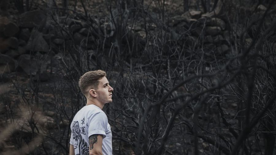 Full length of man standing on bare tree