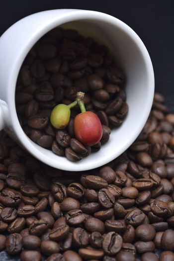 Fragrant pure delicious coffee beans Advanced Coffee Coffee Fruit Pure Bake Close-up Coffee Bean Coffee Beans Coffee Cup Day Delicious Featured Food Food And Drink Fragrant Freshness Fruit Healthy Eating High Angle View Indoors  Need No People Raw Coffee Bean Roasted Coffee Bean Still Life