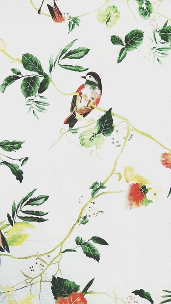 Pattern Abstract Watercolor Painting Ink Painted Image Close-up Day Hdr Photography Freshness Peaceful Green Color Sparrow Bird Beautiful Bedsheet