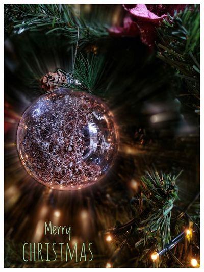 Merry Christmas Christmas Christmas Decoration Celebration Christmas Tree Decoration Christmas Ornament Tree Christmas Lights Close-up