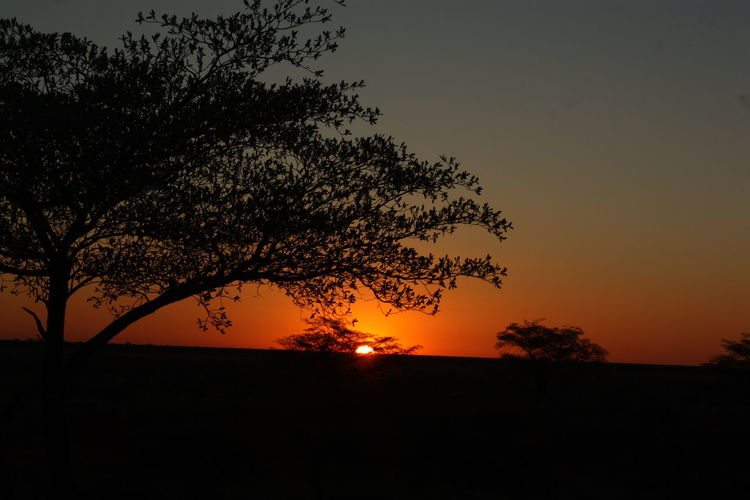Beauty In Nature Landscape Nature No People Outdoors Scenics Silhouette Sky Sunset Tranquil Scene Tranquility Tree