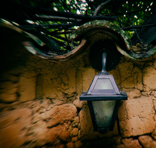Architecture Branch Built Structure Close-up Day Hanging Lamp Low Angle View Nature No People Outdoors Tree