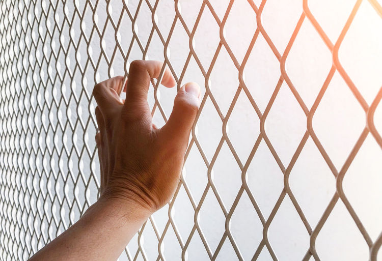 Close-up of hand holding chainlink fence