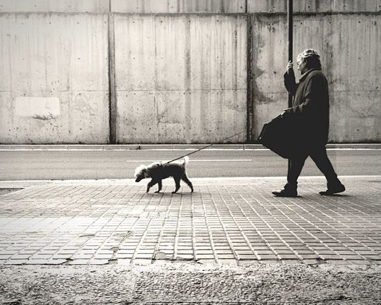 untitled, just a man and a dog Open Edit EyeEm Best Shots EyeEm Best Shots - Black + White The EyeEm Facebook Cover Challenge Streetphotography Streetphoto_bw IPhoneography Mobilephotography Blackandwhite The Street Photographer - 2015 EyeEm Awards Two Is Better Than One