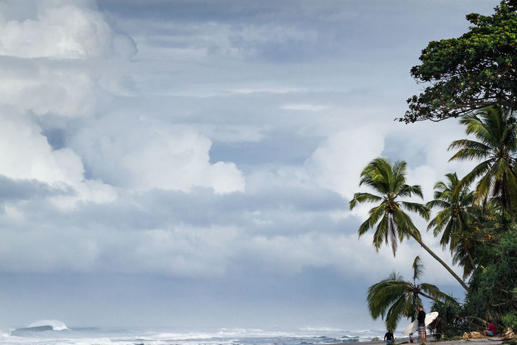 Low angle view of coconut palm trees against cloudy sky