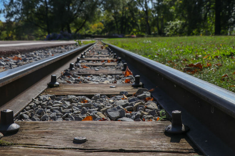 Rails Rail Transportation Track Railroad Track Transportation Plant Day No People Nature Tree Metal Solid Diminishing Perspective The Way Forward Mode Of Transportation Direction Outdoors Stone - Object Rock Railroad Tie Focus On Foreground Gravel Surface Level Long 17.62° Springtime Decadence